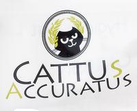 Товар Cattus Accuratus - фото, картинка