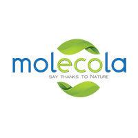 Производитель Molecola - фото, картинка