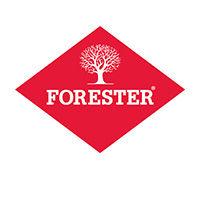 компания Forester